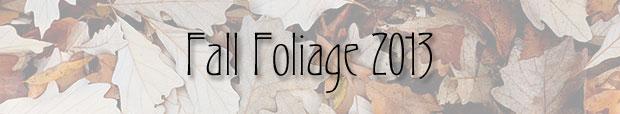 leaf_banner